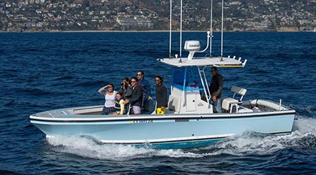 Private whale watching charter in Orange County CA