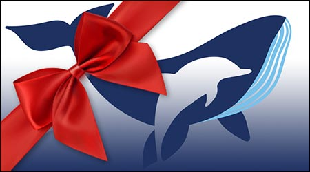 EMW Whale Watching Gift Card